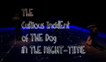 Curious Incident of the dog in the night time (The).jpg